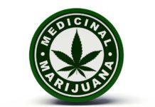Marihuana Medicinal y Autismo