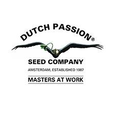 Banco de Marihuana Dutch Passion