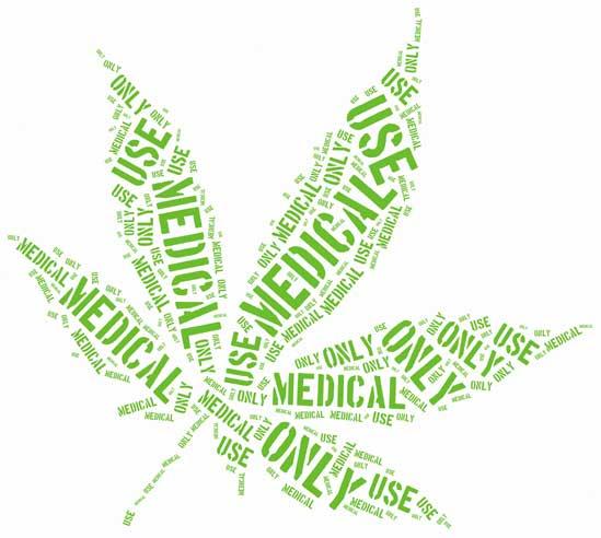 Planta de Marihuana Medicinal