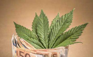 beneficios económicos de la marihuana