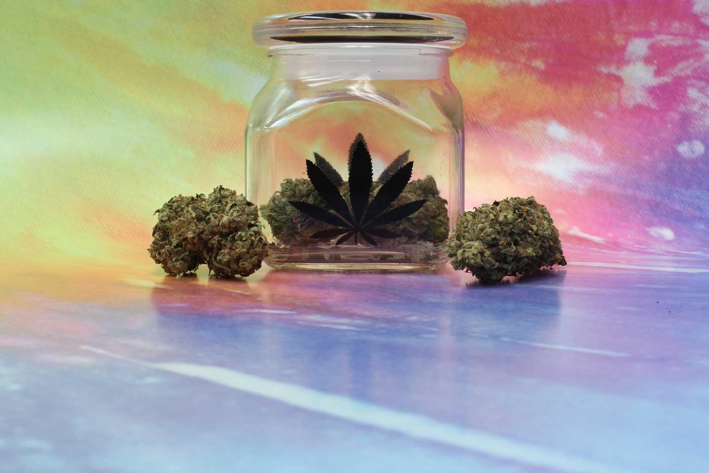 Marihuana medicinal rica en CBD