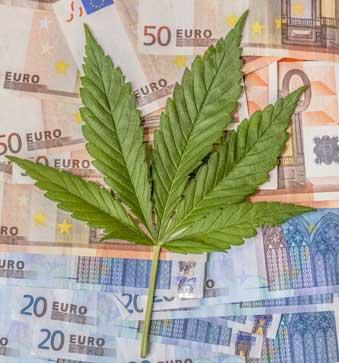 negocio de la marihuana