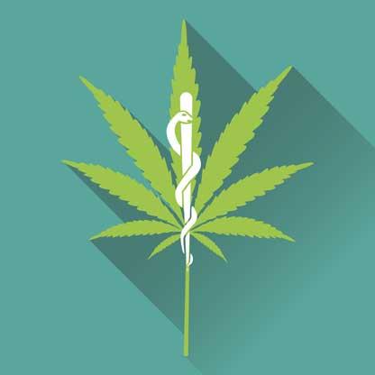 Marihuana rica en CBD