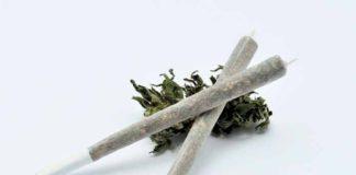 Cómo Eliminar el THC del Cuerpo - Cómo Eliminar THC del Cuerpo Rápidamente