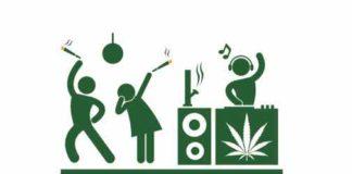 Variedades de Marihuana Sativa - Semillas de Marihuana Sativa