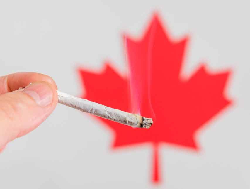 Canadá y la legalización de la marihuana
