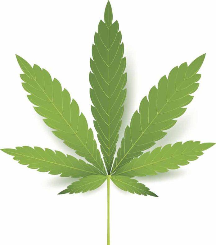 Marihuana y mujeres