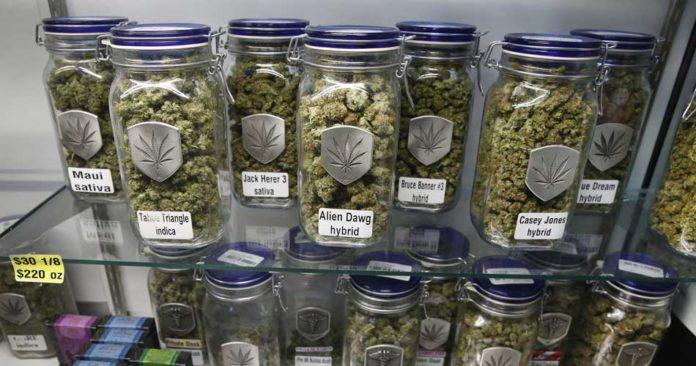 Usos de la Marihuana Medicinal - Posibilidades del Uso de la Marihuana