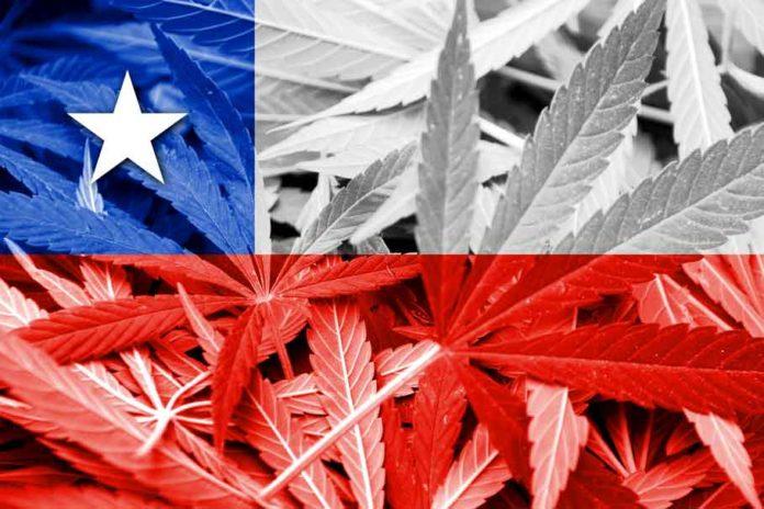 Chile y la Marihuana Medicinal