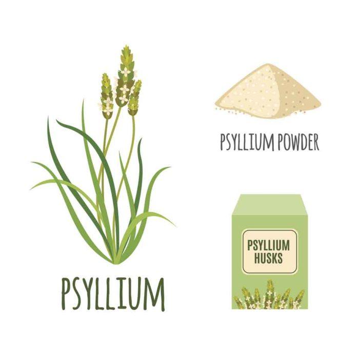 Para que sirve el Psyllium - Plantago Ovata Propiedades - Psyllim Husks