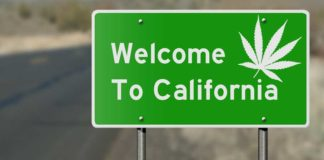 Legalización de la Marihuana en California