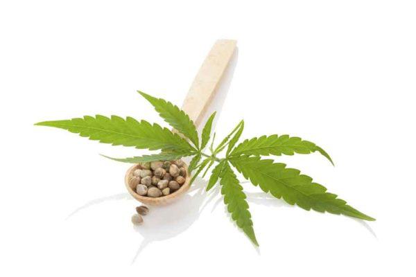 Efectos del cannabis sobre las personas