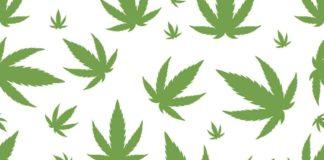 Efectos de la marihuana sobre las personas