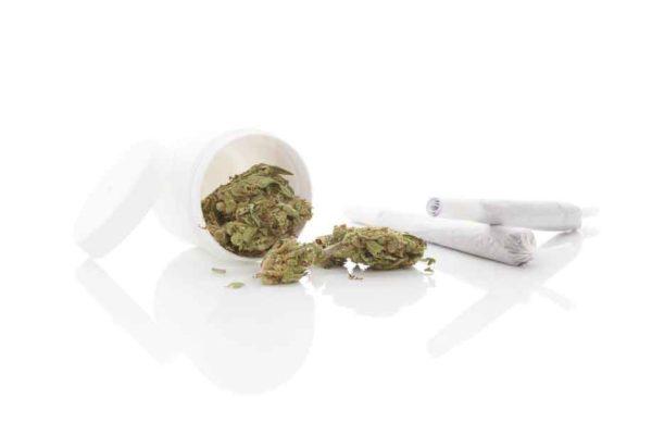 Efectos de la marihuana en el cuerpo humano