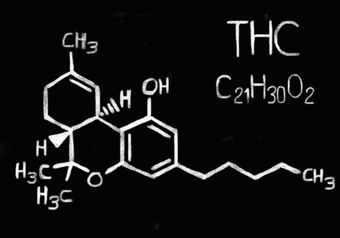 Efectos del THC - ¿Qué es el THC? - ¿Para que sirve el THC?