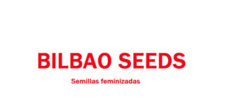 Banco de Semillas de Marihuana Bilbao Seeds
