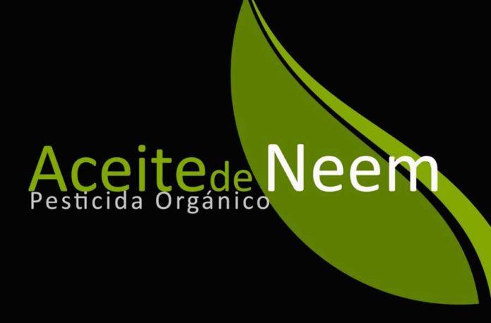 Aceite de Neem para combatir las plagas de la Marihuana