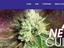 THCJobs para encontrar trabajo relacionado con la industria de la Marihuana