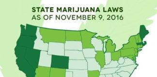 Legalización de la Marihuana en EEUU