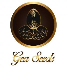 Gea Seeds Banco de Semillas de Marihuana