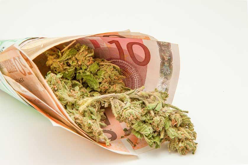 El Importante negocio de la Marihuana en EEUU
