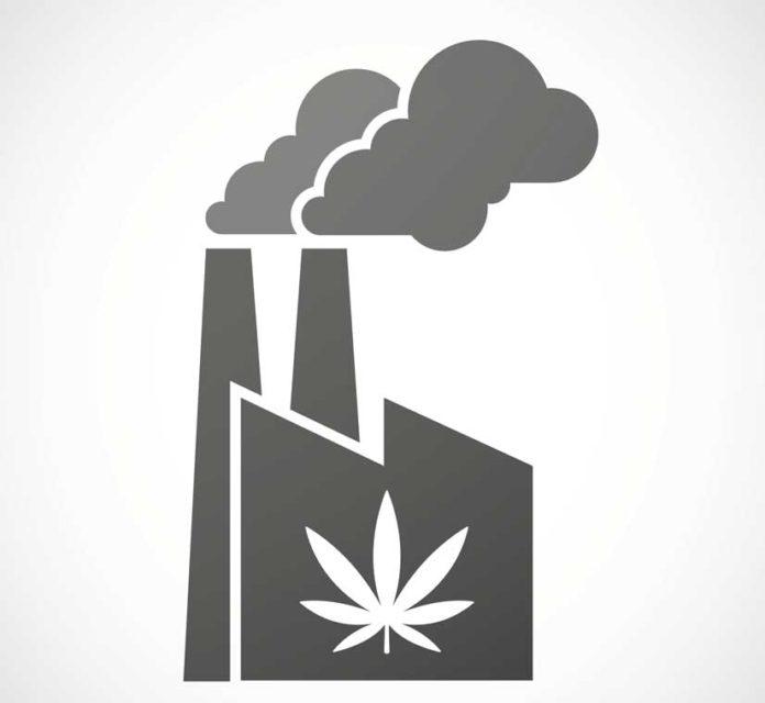 La importante industria de la marihuana en Estados Unidos
