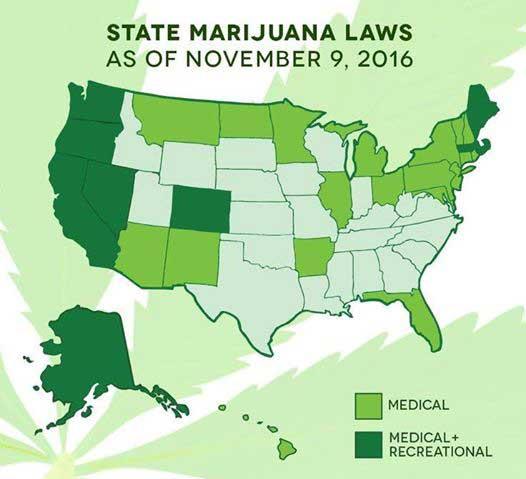 Industria de la marihuana sigue creciendo