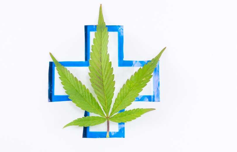 Marihuana Medicinal ¿qué efectos produce la marihuana en la salud?