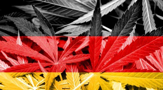 Alemania a un Paso de la Legalización de la Marihuana Medicinal