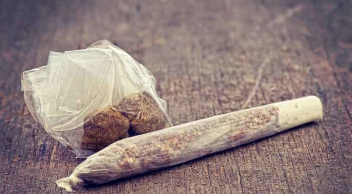¿Cómo diferenciar la Marihuana del Hachís?