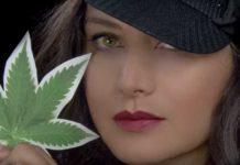 En Defensa de la Cannabis, la planta Millagro para Pacientes y la Industria