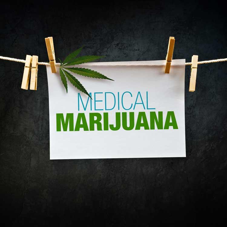 Alemania financiará la Marihuana para uso Medicinal