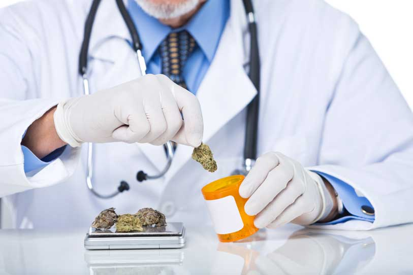 Dinamarca, empieza a tratar a pacientes con Marihuana Medicinal