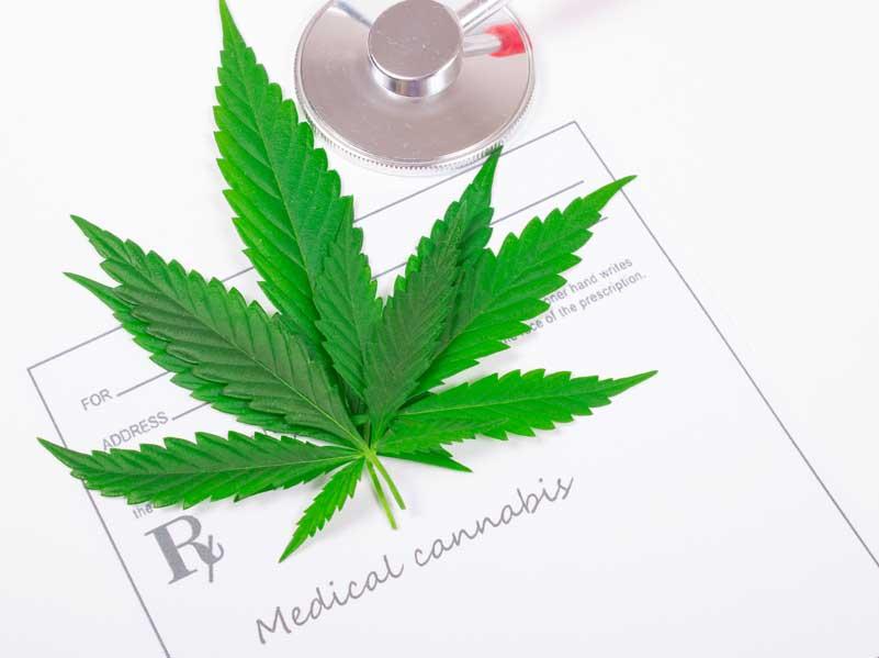 Irlanda legalizará la Marihuana Medicinal con fines Terapéuticos