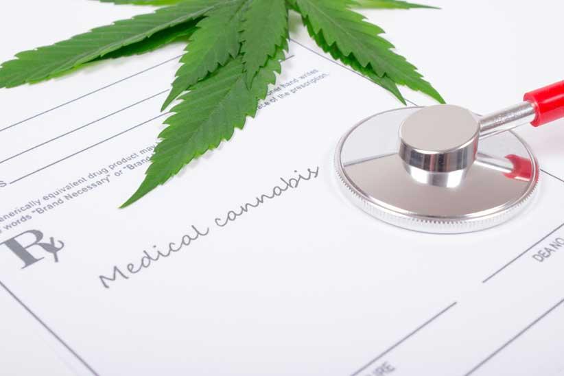 En Ciudad de México ya es legal el consumo del Marihuana Medicinal con fines Terapéuticos