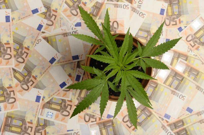 La industria de la Marihuana - El Mercado de la Marihuana