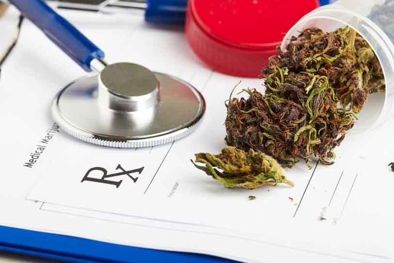 Marihuana Medicinal en Italia