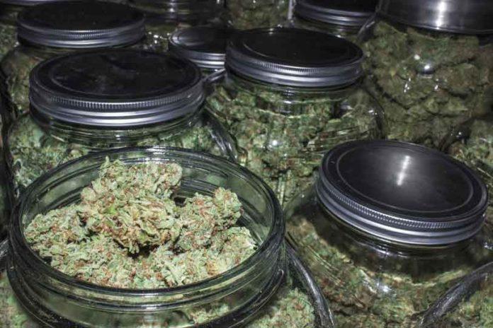 La Marihuana Medicinal en las Farmacias Italianas