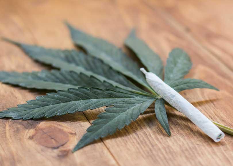Liar un Porro de Marihuana