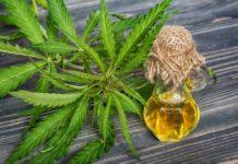 Aceite de Marihuana Medicinal - Aceite de Cannabis