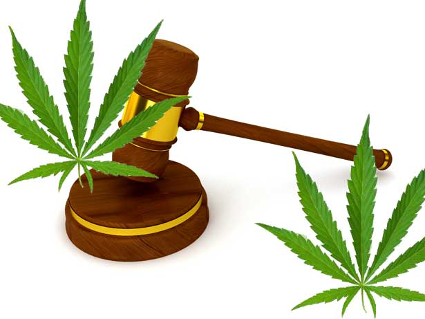 Abogados Marihuana Madrid - BRA Abogados en Madrid