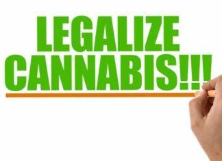 Cataluña Legalización Marihuana - Cataluña Consumo de Marihuana