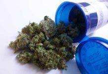 Puerto Rico Marihuana Medicinal - Marihuana Terapéutica Puerto Rico