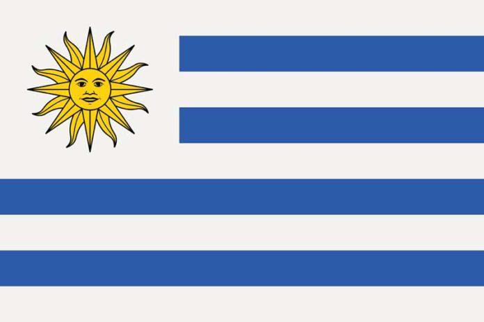 Legalización de la Marihuana en Uruguaya - Uruguay Marihuana