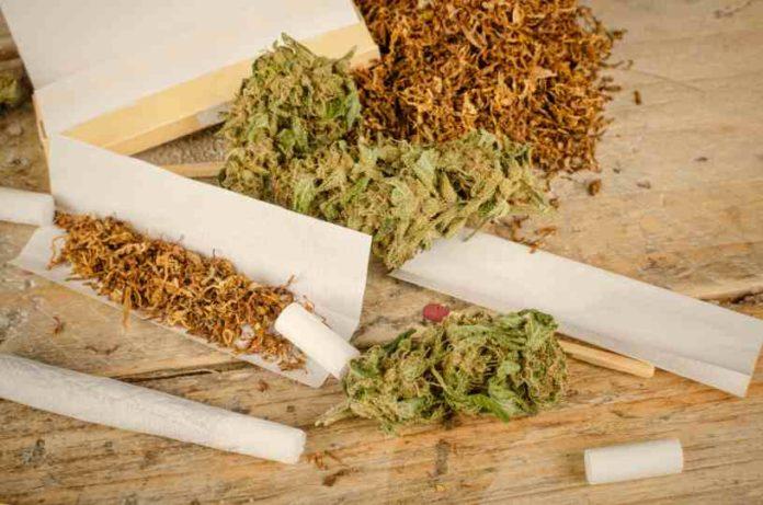 Marihuana y Alcohol - Marihuana y el Tabaco