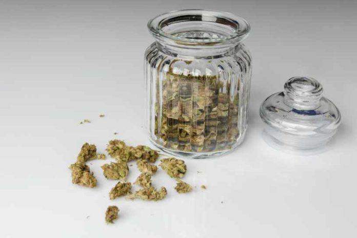 Cómo Consumir Marihuana - Formas de Consumo de Marihuana