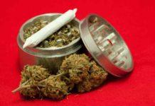 Consumo de Marihuana - Reducir Riesgos en el Consumo de Marihuana