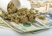 Estados Impuestos de la Marihuana - Ganar Dinero con la Marihuana
