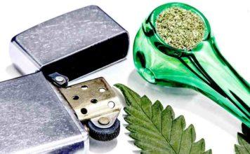 Para qué Sirve el CBD de la Marihuana- Para qué Sirve el Cannabidiol