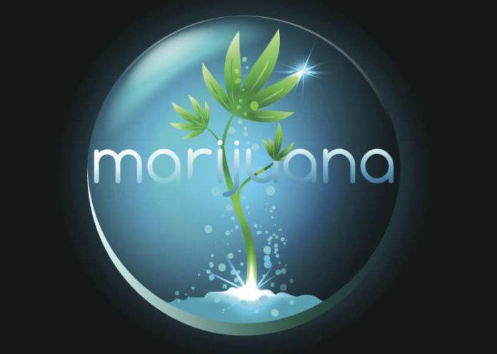 Beneficios Legalización Marihuana - Razones Legalización Marihuana